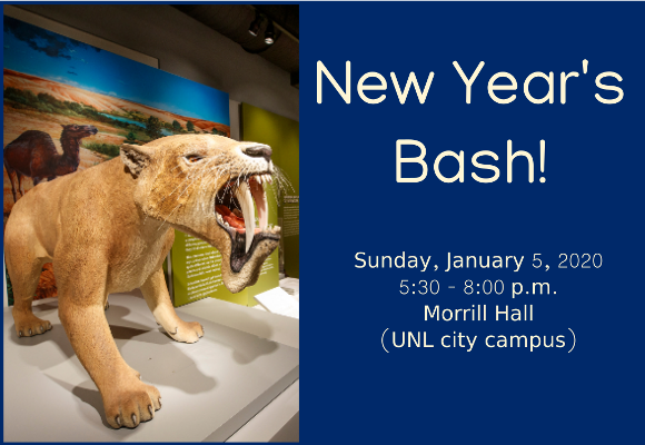 New Year's Bash banner